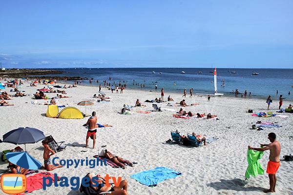 Zone de baignade sur la plage de Ty Bihan - Carnac