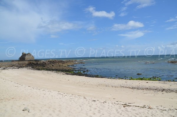 Photo of Ty Guard beach in La Trinité sur Mer