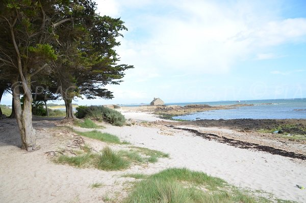 Environment of the beach of Ty Guard in La Trinité sur Mer