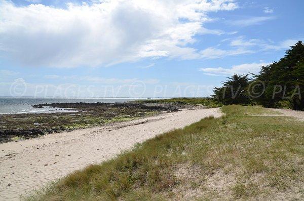 South beach of La Trinité sur Mer at low tide