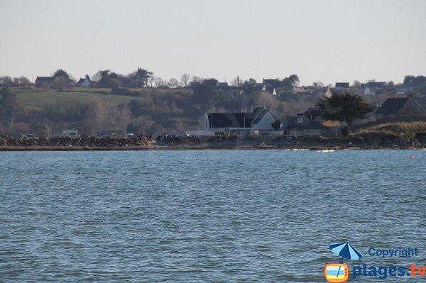 Vue sur le port de Térénez