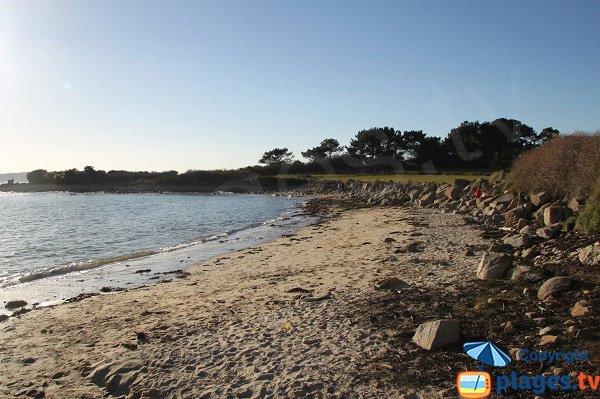 Photo de la plage de Ty Louzou de Plougasnou
