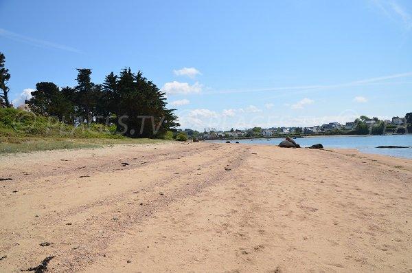 Photo of Bay of Sainte Anne beach in Trégastel in France