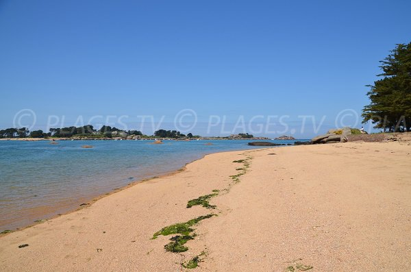 Plage à côté de la plage de Quo Vadis à Trégastel