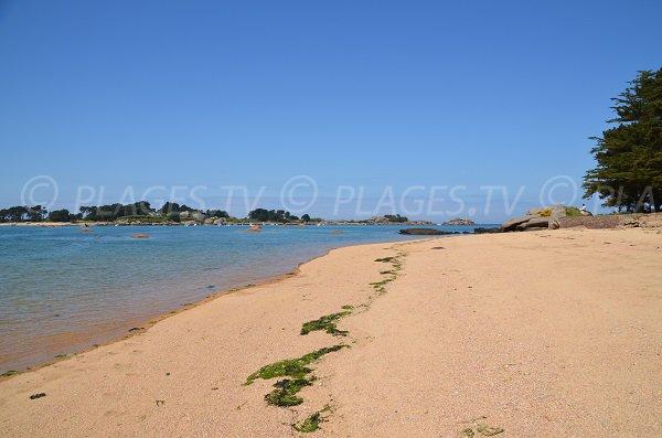 Photo of Ty Neouis beach in Trégastel