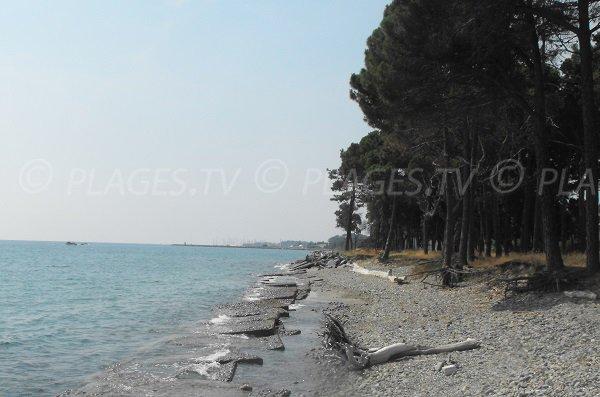 Foto della spiaggia di Vanga di l'Oru in Corsica