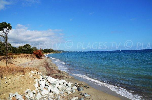 Sabbia della spiaggia di Vanga di l'Oru - Corsica