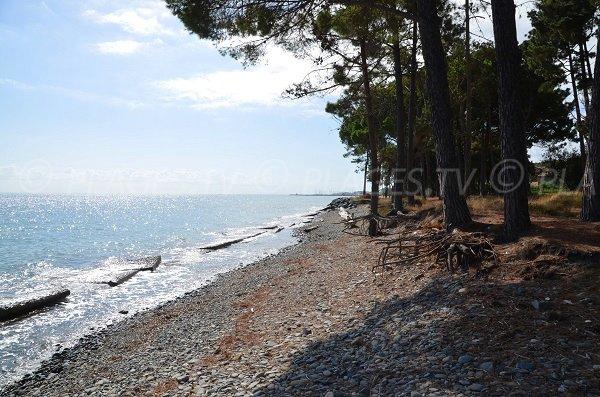 Spiaggia di Vanga di l'Oru a Santa Maria Poggio in Corsica