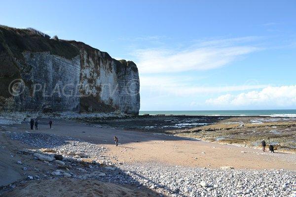 Photo de la plage de Vaucottes à Vattetot sur Mer