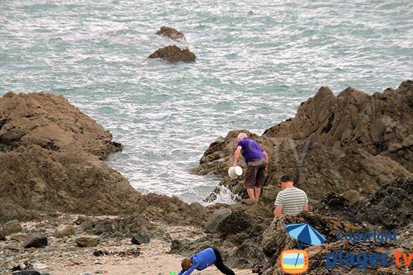 Pêche à pied à Planguenoual
