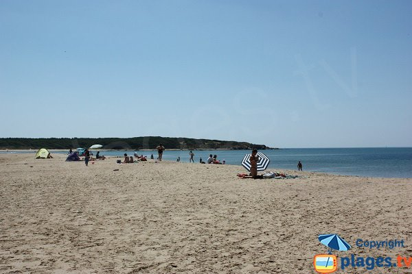 Plage de sable sauvage à Talmont