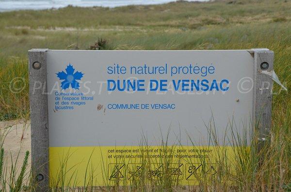 Site naturel des dunes de Vensac