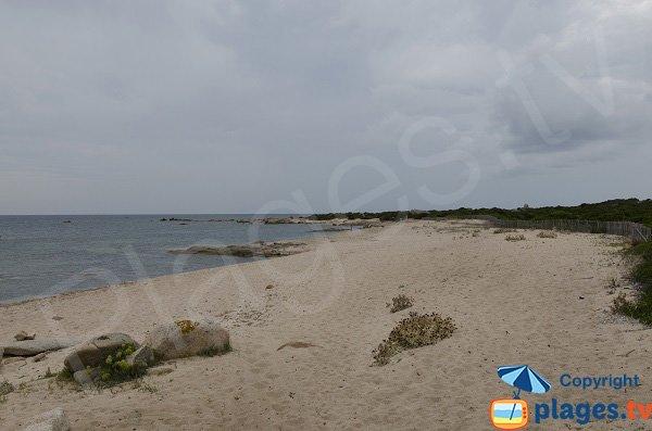 Plage de sable à la pointe de Ventilegne