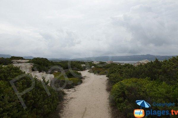 Sentier du littoral au niveau de la pointe de Ventilegne