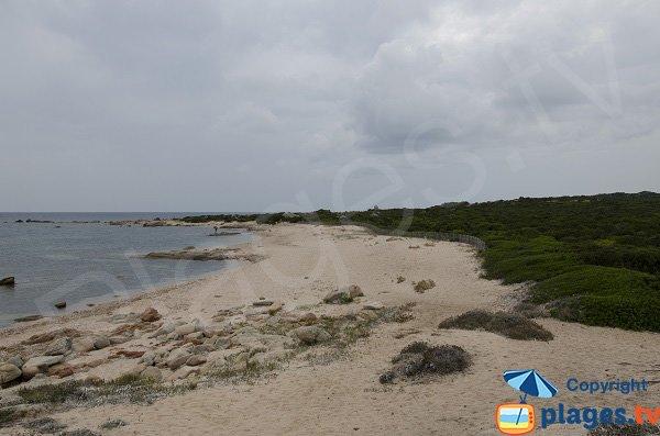 Photo de la plage à la pointe de Ventilegne - Corse Figari