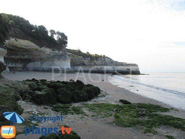 Crique au sud de la plage de Vergnes - Meschers sur Gironde