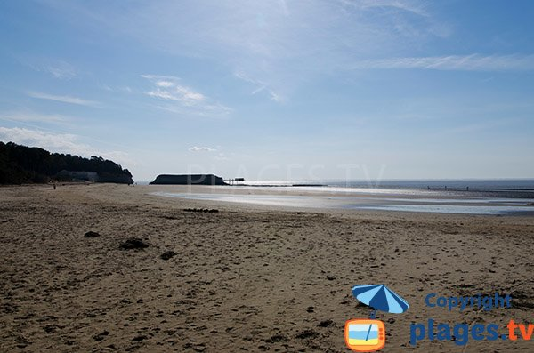 Photo de la plage de Vergnes à marée basse - Meschers