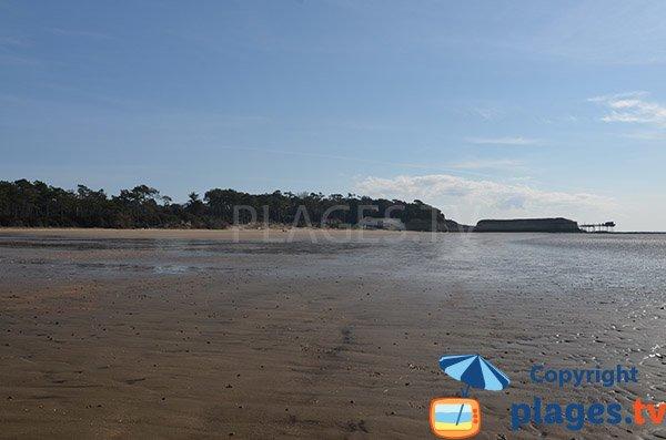 Plage avec des carrelets à Meschers sur Gironde