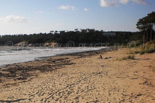 Photo de la plage des Vergnes à Meschers sur Gironde