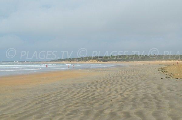 Vert Bois beach in Oléron in France