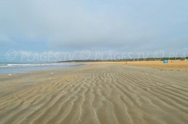 Photo de la plage de Vert Bois à Dolus d'Oléron