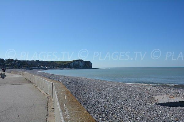 Photo de la plage de Veulettes sur Mer