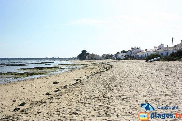 Vieil beach in Noirmoutier in France