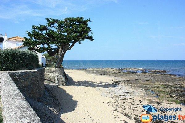 End of Vieil beach in Noirmoutier