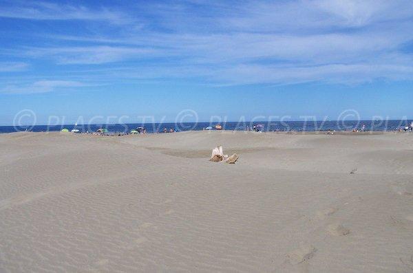 Dunes sur la plage de la Vieille Nouvelle - Port la Nouvelle