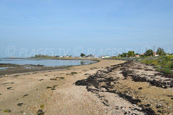 Foto della spiaggia della Vergine a Fouras
