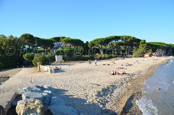 Photo de la plage du Vieux Moulin à Grimaud