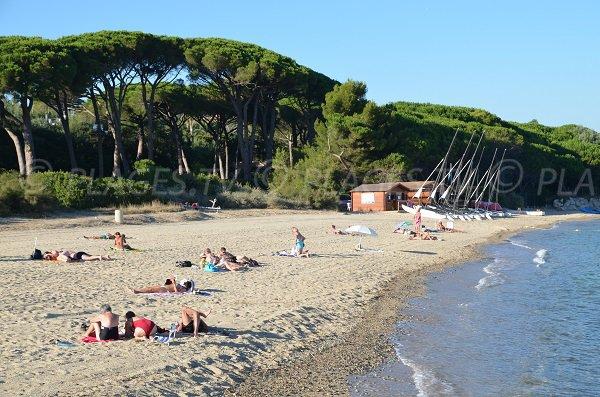Foto della spiaggia del Vieux Moulin in estate a Port-Grimaud