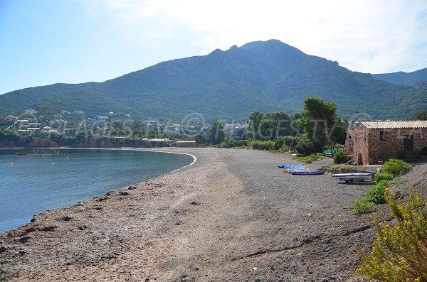 Photo de la plage de Galéria vue depuis le port