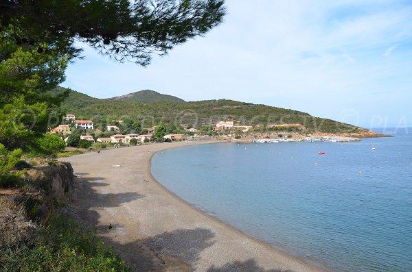 Photo de la plage de Galeria en Corse