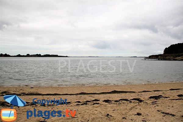 Ile Tascon - Golfe du Morbihan