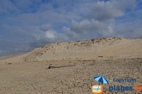 Dunes de la plage du Viver à Biscarrosse