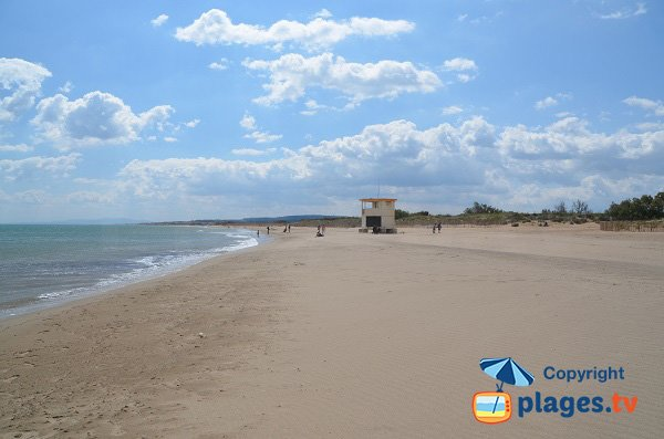 Beach near the Grau of Vendres - Cabanes de Fleury