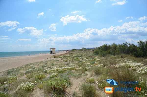 Photo of Cabanes Fleury beach (St Pierre sur Mer)