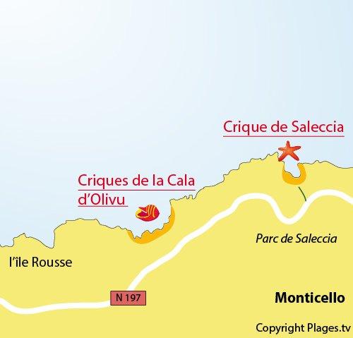 Plan de la crique de Saleccia en Corse à proximité de l'Ile Rousse