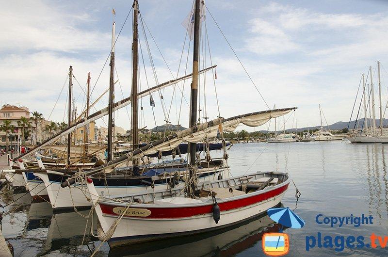 Pointu in Sanary port in France