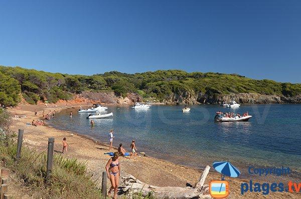Plage Noire du Langoustier: une des plus belles plages sauvages de Porquerolles