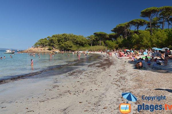 La plage d'Argent à Porquerolles: trop touristique