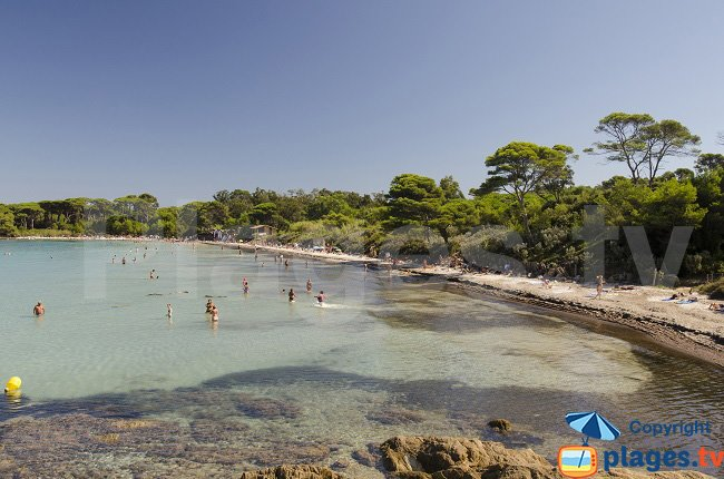 Beach near the port of Porquerolles - Argent beach