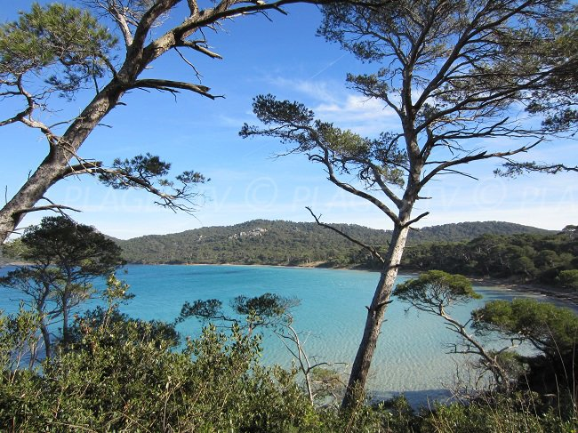 Bay of Porquerolles near Notre Dame beach