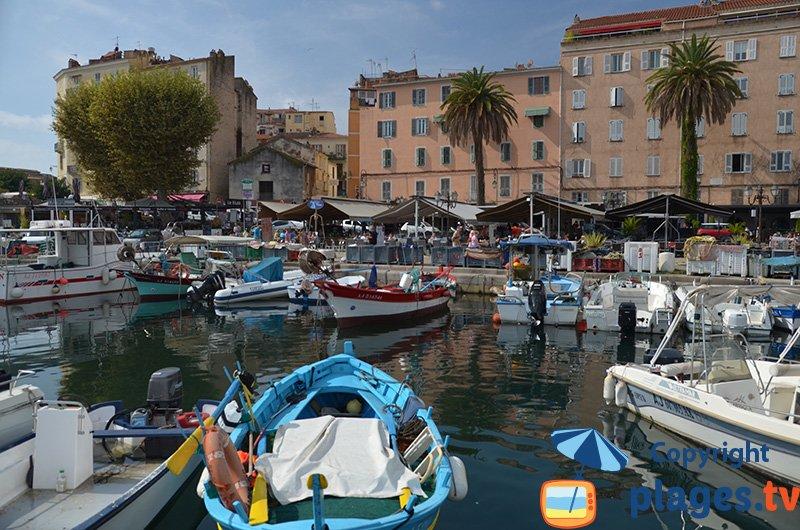Ajaccio : an authentic harbor
