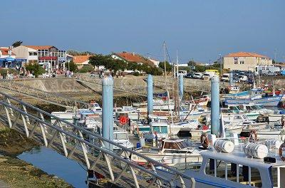 Port of Cotinière - Oleron island