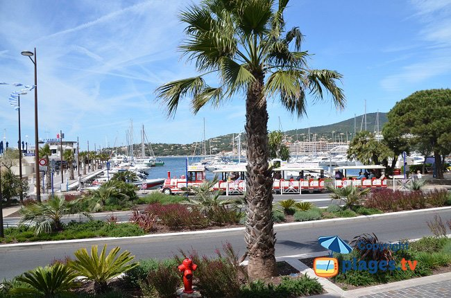 Port of Sainte Maxime in France