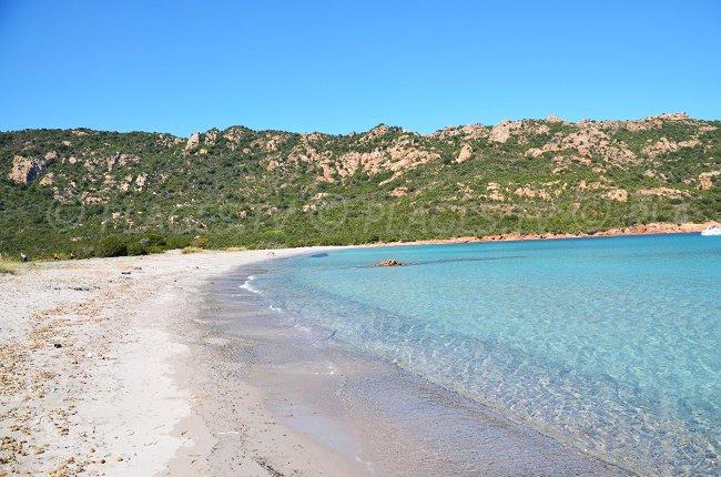 Spiaggia nel golfo di Porto Novo - Corsica