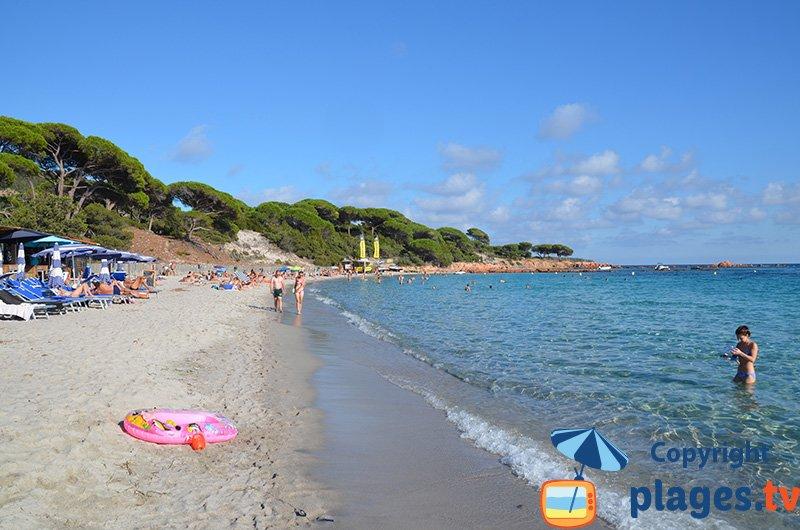 Palombaggia : le paradis de la Corse