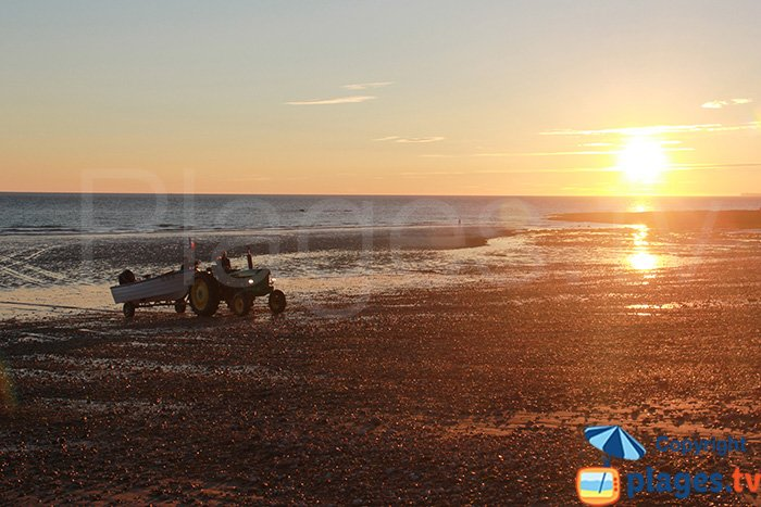 Return of the fishermen on the beach of Audresselles